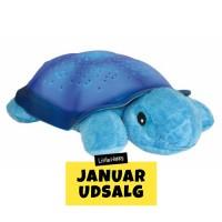 Twillight Turtle, blue