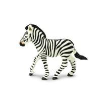 Zebra føl