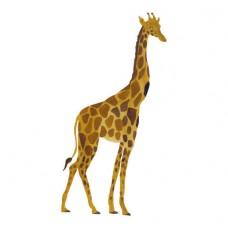 Wallstories - Giraf